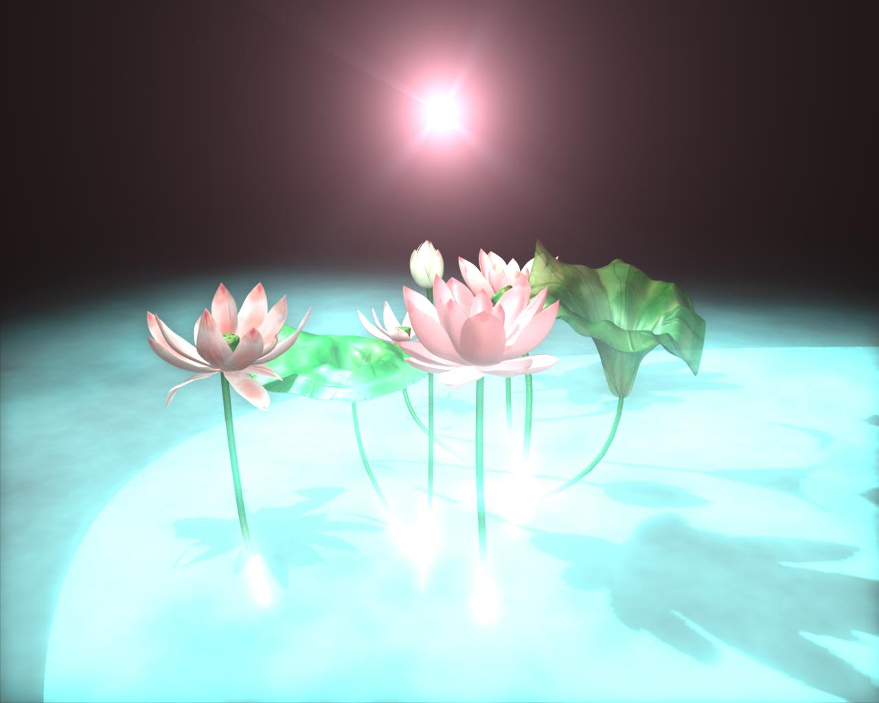 Painting Lotus Flowers In Other Dimensions Photo 3 Blogs